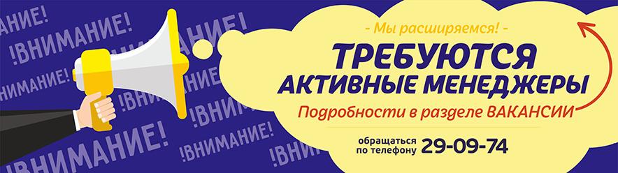 Примеры пакеты с логотипами